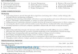 Executive Resume Formats Adorable Student Resume Format Doc Samples In Word Executive Classic Template