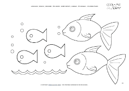 color pages fish outline coloring page ocean template to rainbow printable of betta
