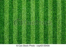 green grass soccer field. Green Grass Soccer Field Background - Csp43135400 Green O