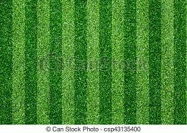 grass soccer field. Green Grass Soccer Field Background - Csp43135400 F