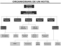 Hotel Organizational Structure Chart Www Bedowntowndaytona Com