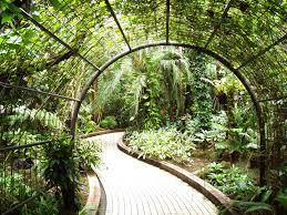 Indoor Garden Attractive Indoor Garden Design For Perfect Home 2953