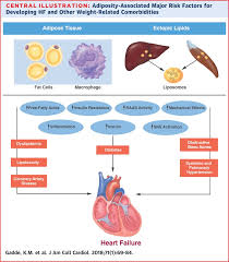 Diabetes Type 2 Pathophysiology Flow Chart Obesity Pathophysiology And Management Sciencedirect