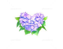 「紫陽花イラスト」の画像検索結果