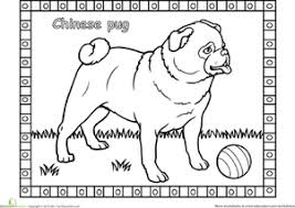 Small Picture Pug Worksheet Educationcom