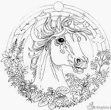 56 Goed Kleurplaten Van Paarden Collectie Kleurplaatvuurwerkco