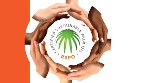 rspo communication improvement supports sustainable palm oil development