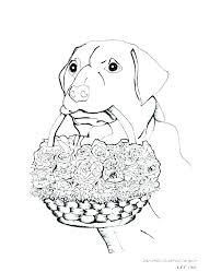 Boxer Dog Coloring Pages Free Printable Coloring Pages Of Dogs Free