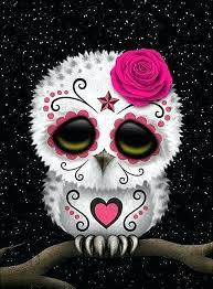 sugar skull face painting makeup owl diamond embroidery kit
