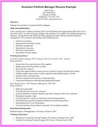 Resume Portfolio Examples Mesmerizing Resume Resume Portfolio Examples Best Resume Template Intended