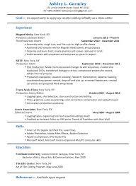 Resume Editor Resume