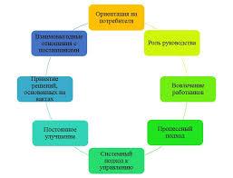 Реферат Управление качеством продукции и услуг в сфере  Принципы функционирования системы качества