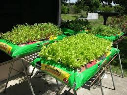 best soil for vegetable garden. best soil for organic vegetable garden 96 about remodel stunning home design furniture decorating with x