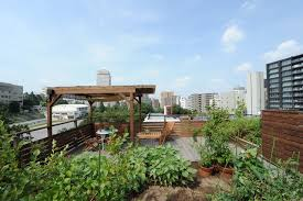 33 gorgeous rooftop gardens and