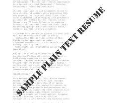 Plain Text Resume Format Resume Template Ideas