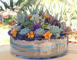 succulent-arrangement 124