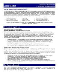 Sales And Marketing Resume Samples New Marketing Account Executive Resume Learn More About Video Marketing