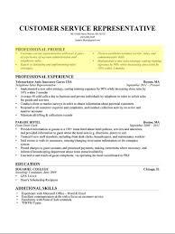 Resume Profile Example Drupaldance Com