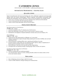 Channel Sales Manager Resume Sample Newest Rn Resume Sample New Registered Nurse Resume Sample 12