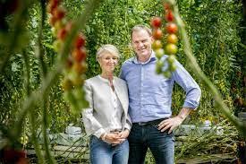 Stoffels kweekt groenten voor sterrenchefs in Rijkevorsel (Rijkevorsel) -  Gazet van Antwerpen Mobile