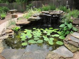 backyard garden pond kit