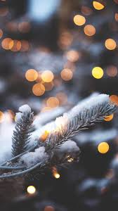 christmas wallpaper tumblr snow. Contemporary Christmas Christmas Evergreen With Twinkling Lights With Wallpaper Tumblr Snow P