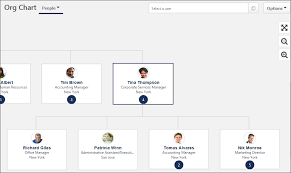 Cag Organisation Chart Org Chart Page