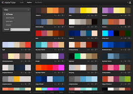 How to Select the Perfect Color Scheme for Your Website