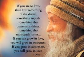 Divine Love Quotes You will grow in love Quote 100 J Ricci Energy 40
