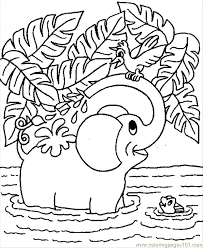 Small Picture Baby Elephant Coloring Page Free Elephant Coloring Pages