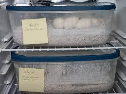diy corn snake incubator clublilobal