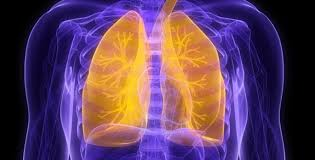 New drugs approved to fight idiopathic pulmonary fibrosis | VUMC Reporter |  Vanderbilt University