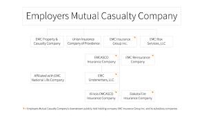 Ownership Organizational Chart Dell Emc Organizational Chart Www Bedowntowndaytona Com