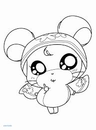 Cute Hamster Black Eyes Iphone 6 Wallpaper Inspirational 22