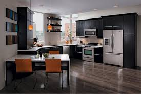 Modern Kitchen Remodel Kitchen Kitchen Remodel Ideas With Black Cabinets Rustic Baby