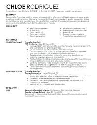 Executive Assistant Resume Sample Resume And Template Extraordinary Administrative Assistant Resume Examples