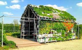 front lawn vegetable garden 2