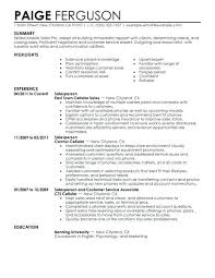 Objective For Resume For Sales Sample Resume Of Sales Lady E Resume ...