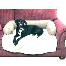 pet couch protector couch dog covers pet furniture covers for leather sofas best of couches fascinating