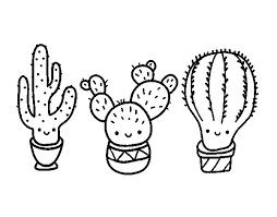 Small Picture 3 mini cactus coloring page Coloringcrewcom