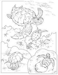 Small Picture free animal coloring pages for adults this Leatherback Sea