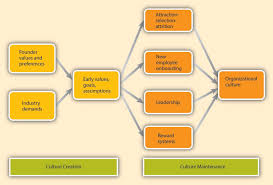 organizational culture how are cultures created