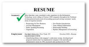 resume with profile statement resume profile statement examples resume badak