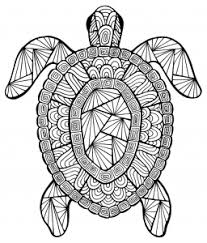 Small Picture Sea turtles Coloring pages for adults JustColor