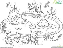 Pond Life Worksheet Educationcom
