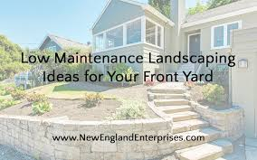 6 low maintenance landscaping ideas for