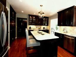 Kitchen Ideas Dark Cabinets Interesting Inspiration