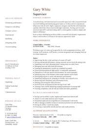 Super Resume Interesting Super Resume Template Kor28mnet