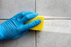 cleaning bathroom tile. If You Have Tiles In Your Bathroom Which Are Dirty, Grimy And Accumulated Hard To Remove Dirt, Then Could Cleaning Tile E