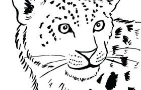 The Leopard Coloring Pages For Adult And The Best Free Adult